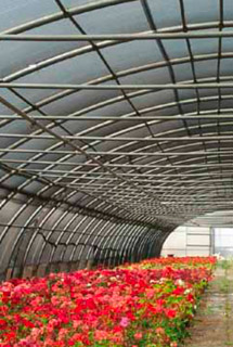 GRP corrugated rolls for greenhouses - ELYPLAST