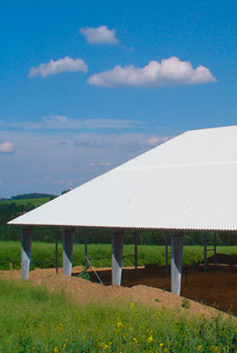 GRP sheets and rolls for agricultural buildings - ELYPLAST