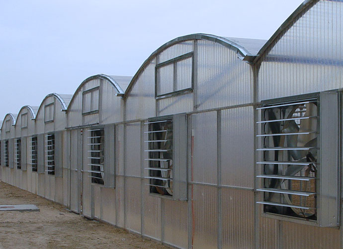 GRP translucent roof sheets